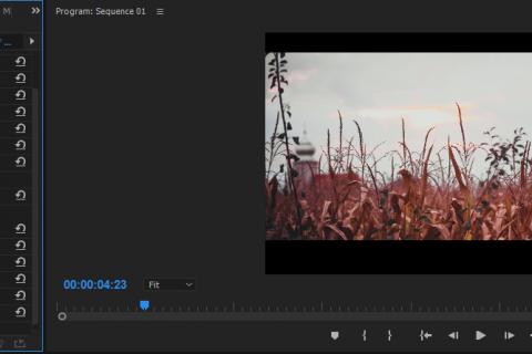 Adobe Premiere pro crop effect
